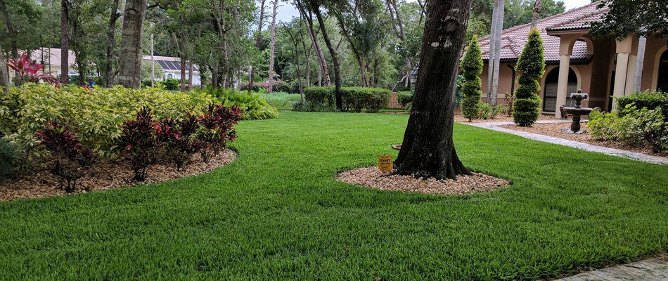 Beautifully maintained lawn and landscape in Casey Key, FL
