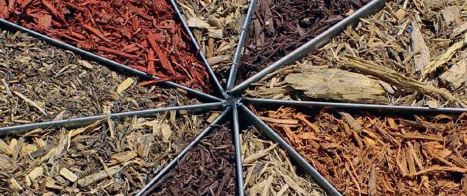 All the different color of mulch we offer our clients.