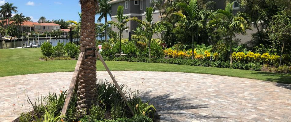 Custom patio paver installed at a home in Longboat Key, FL including new trees, shrubs, and flowers.